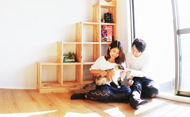猫とまったり家デート
