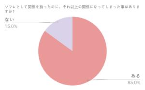 ソフレグラフ3